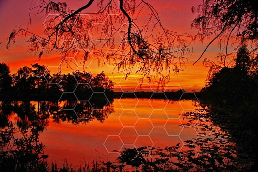 Florida Sunset 008