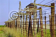 Majdanek Barbed Wire Fence 0005