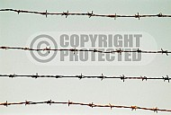 Mauthausen Barbed Wire Fence 0008