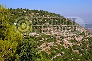 Judaean Hills 0003