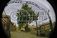 Auschwitz Camp Gates 0009
