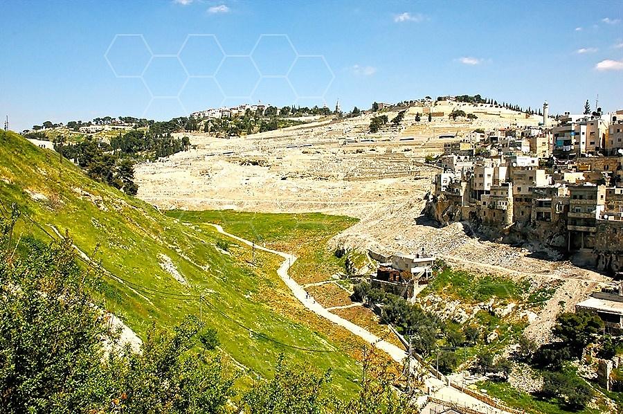 Jerusalem Kedron Valley 005
