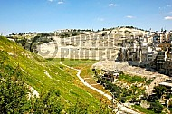 Jerusalem Kedron Valley 005