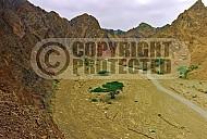 Mount Solomon 005