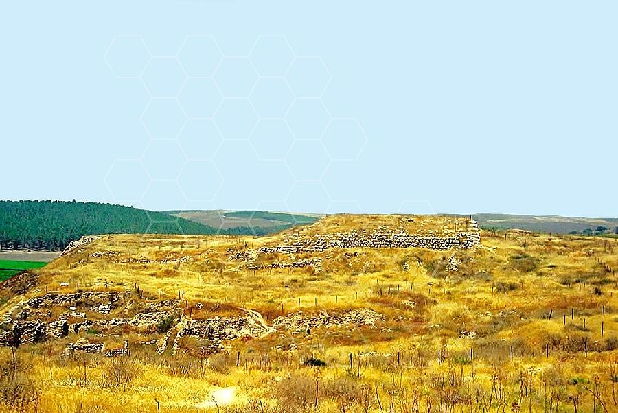 Tel Lachish 005