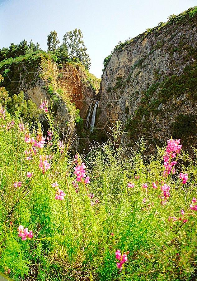 Tanur Waterfall 005