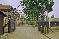 Auschwitz Camp Gates 0011
