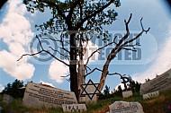 Gross-Rosen Memorial 0004