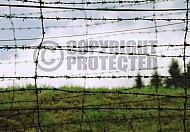 Natzweiler-Struthof Barbed Wire Fences 0006