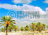Tel Megiddo Ruins 008