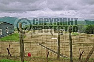 Natzweiler-Struthof Barracks 0009