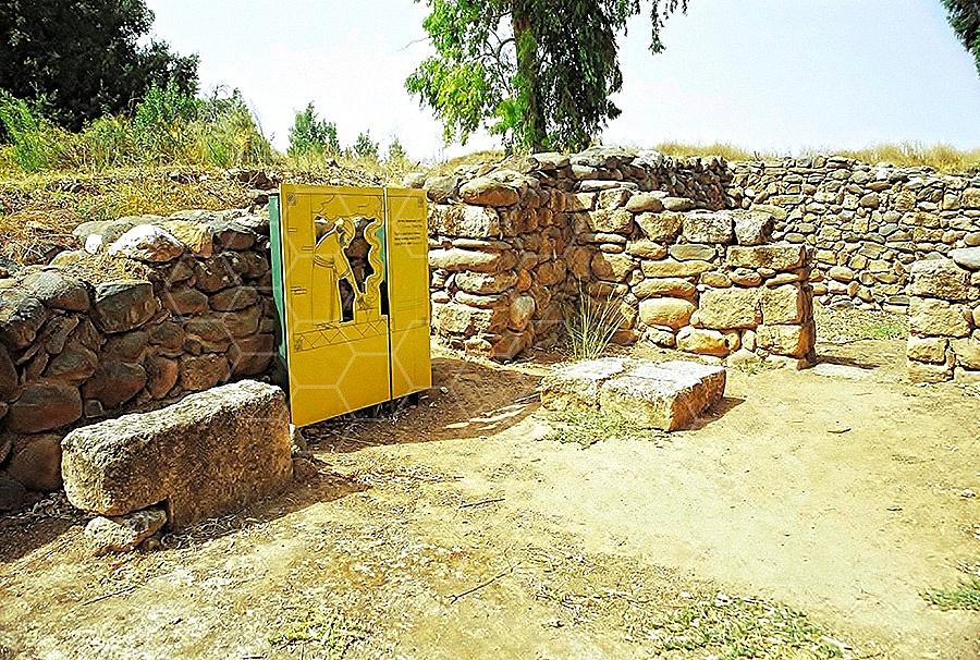 Tel Dan Altar 010