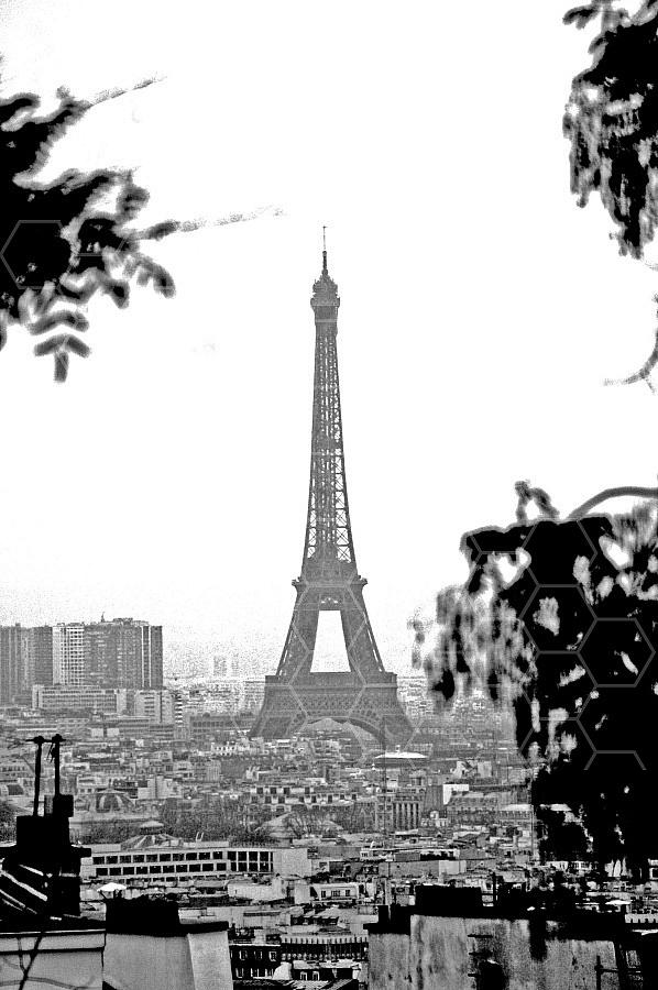 Paris - Eiffel Tower 0038