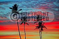 Hawaii Sunset 004