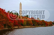 Washington National Mall 0014