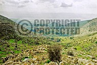 Golan Heights 0012
