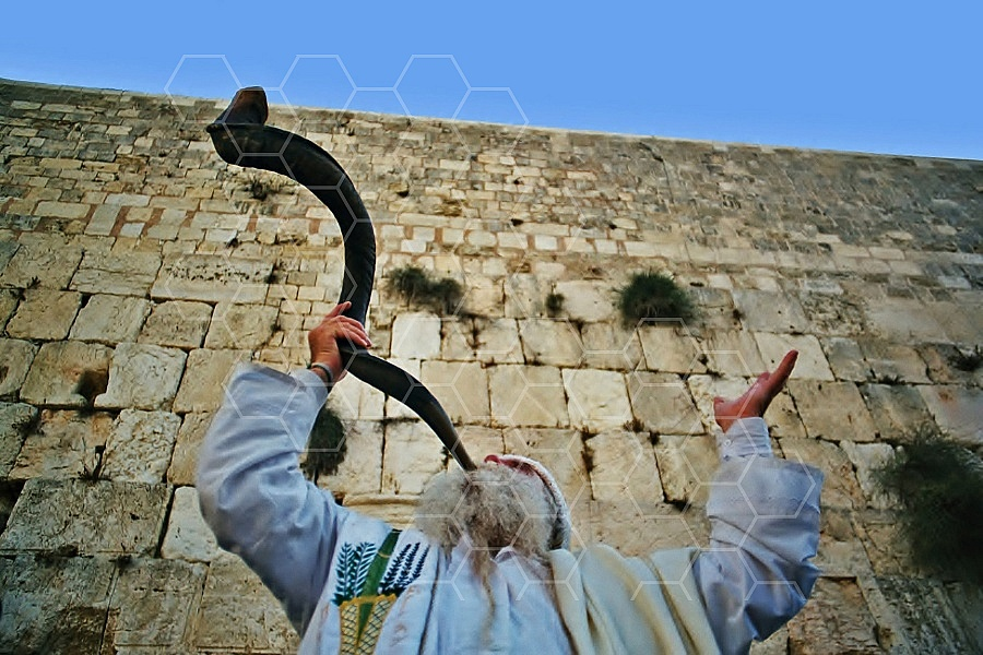 Kotel Blowing The Shofar 0005