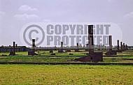 Birkenau Camp Barracks 0015