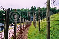 Natzweiler-Struthof Barbed Wire Fences 0005