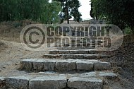 Jerusalem St Peter in Gallicanto 0003