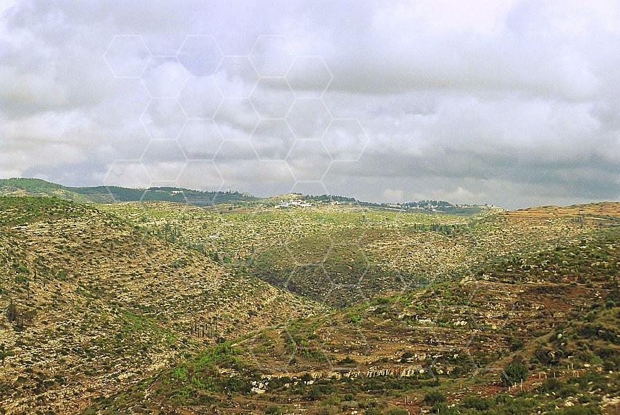 Judaean Hills 0013