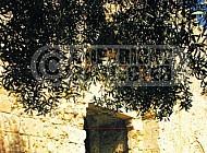 Jerusalem Old City Zion Gate 010