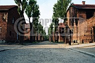 Auschwitz Barracks 0010