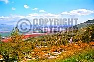 Hula Valley 001