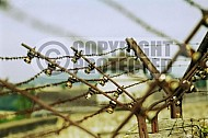 Mauthausen Barbed Wire Fence 0011