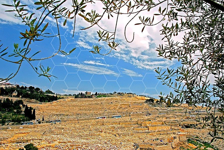 Jerusalem Mount Of Olives 001