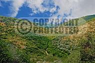 Mount Carmel 001