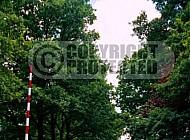 Westerbork Entrance Gate 0004