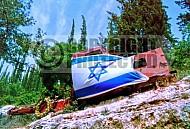 Israel Flag 017