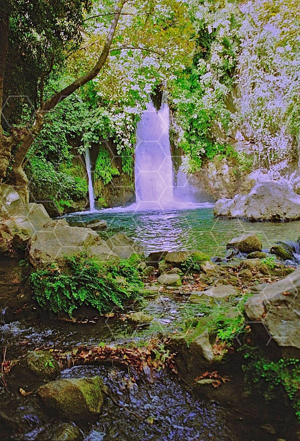 banias waterfall 0013