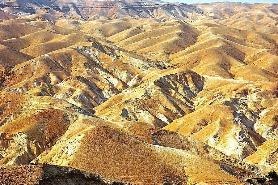 Judean Desert 017