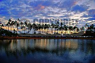 Reflections Hawaii 003