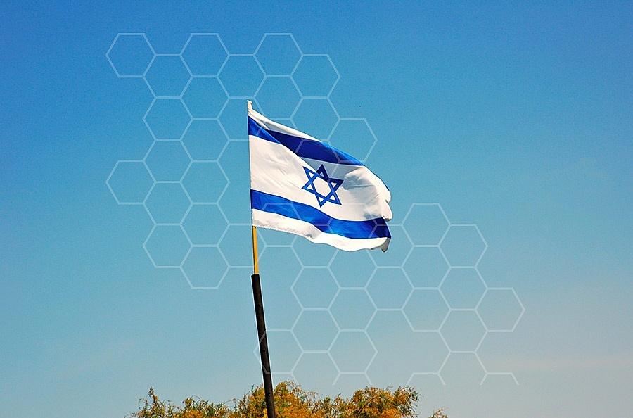 Israel Flag 022