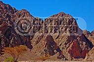 Mount Solomon 0020