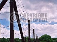 Westerbork Barbed Wire Fence 0007