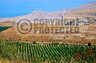 Golan Heights 0004
