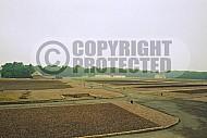 Buchenwald Grounds 0002