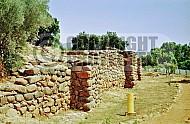 Tel Dan City Wall 004