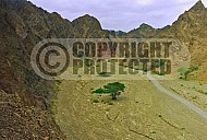 Mount Solomon 0002