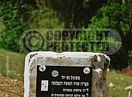 Rabbi Yonatan Ben Uziel 0019