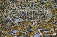 Treblinka Ashes Memorial 0002