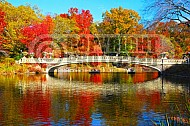 Foliage New York City Central Park 002