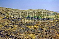 Golan Heights 0017