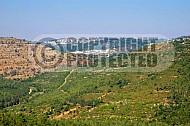 Judaean Hills 0024