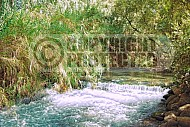 Dan River 002