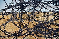 Sobibor Barbed Wire Fence 0001